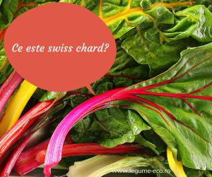 Ce este swiss chard-